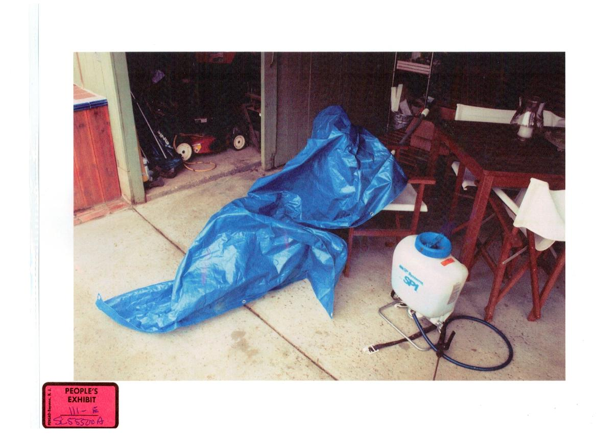 The weight of the market crime scene photos of laci peterson